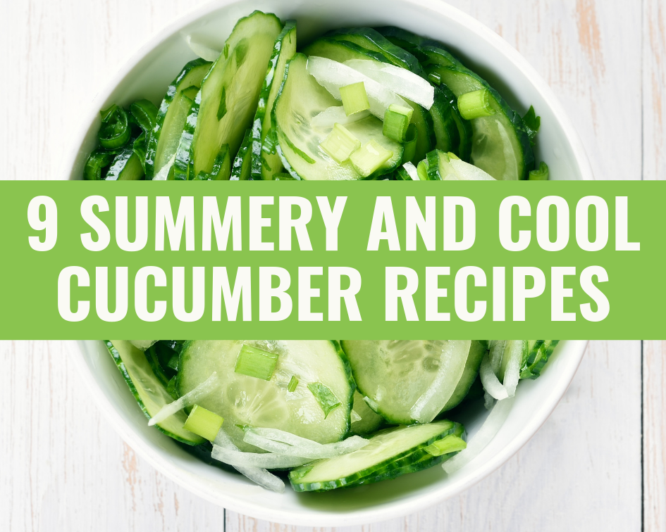 summer cucumber dish