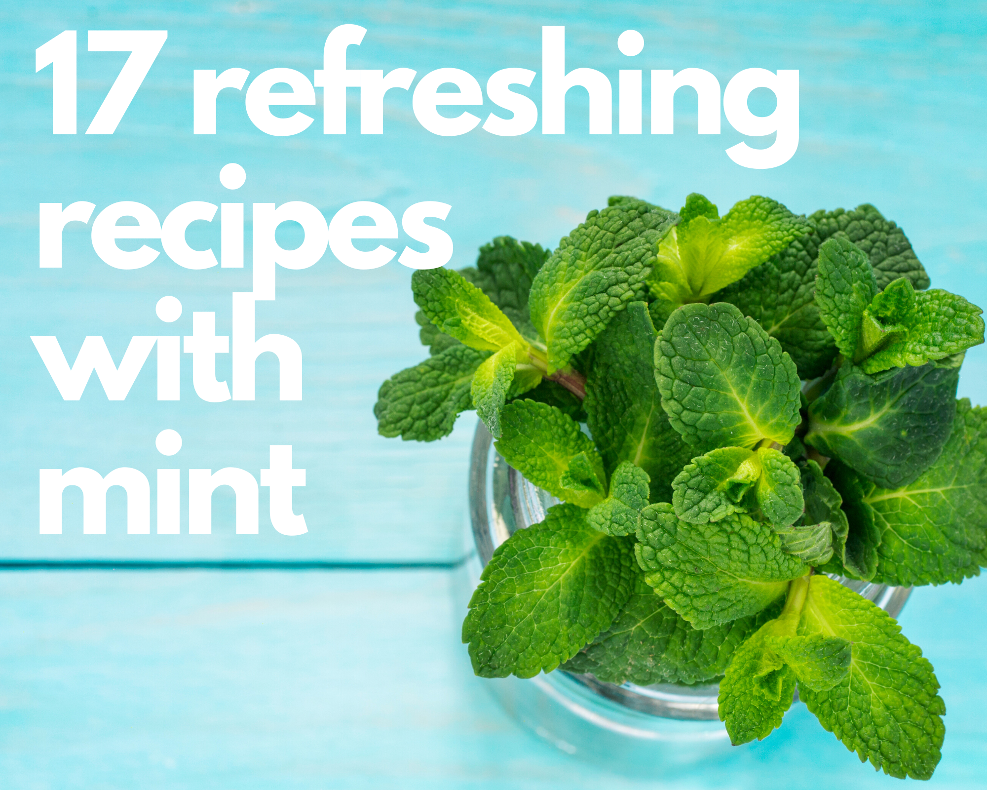 A bundle of fresh mint