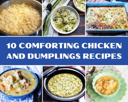 Homemade chicken and dumpling recipes