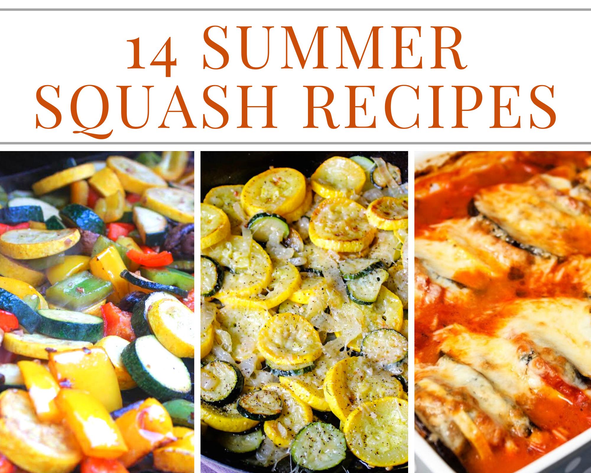 summer squash recipes