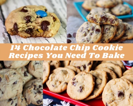 14 Chocolate Chip Cookie Recipes You Need To Bake